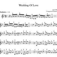 نت آهنگ عروسی عشق Wedding Of Love  برای تار